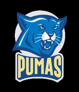 IDEA Palmview Pumas