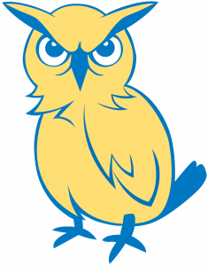IDEA South Flores owls mascot