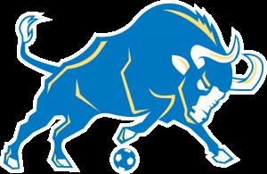 IDEA Toros Mascot