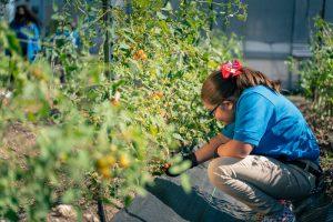 IDEA Public Schools Farm