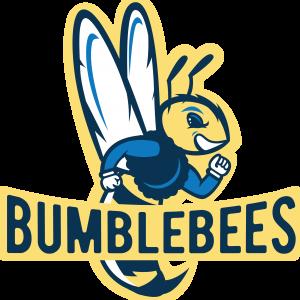 IDEA Burke Bumblebees Mascot